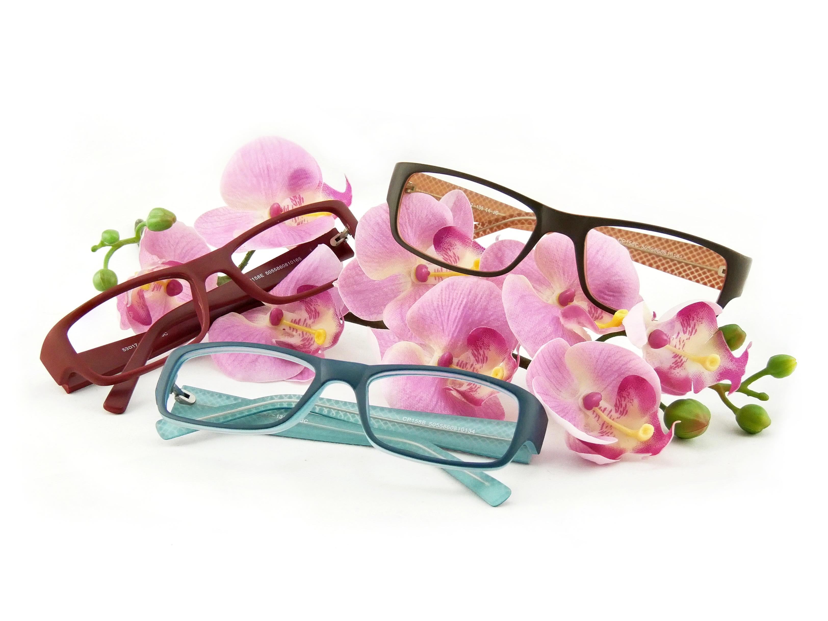 Brillen der Woche 8